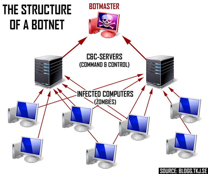 Botnet Detection and Removal Structure of a Botnet