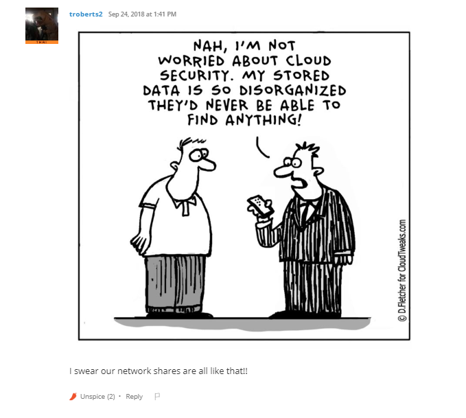 Not worried about cloud security - data so disorganized they'd never be able to find anything