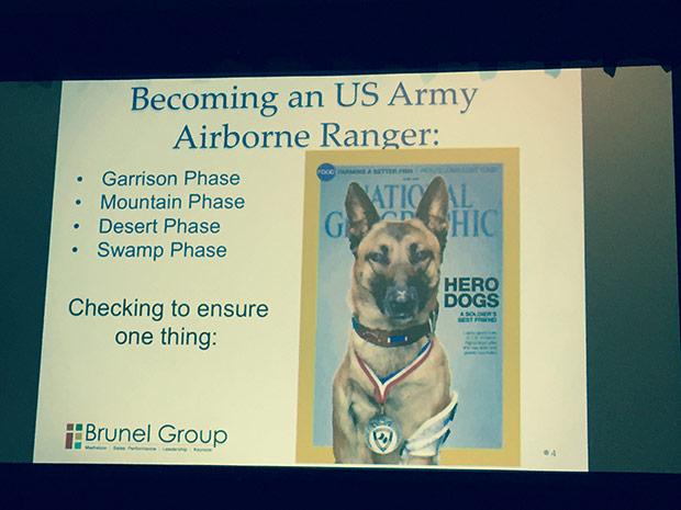 army ranger dog