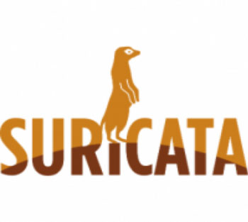2019 Open Source IDS Tools: Suricata vs Snort vs Bro (Zeek