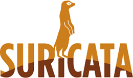 Suricata is a preferred Network IDS tool for analyzing network traffic